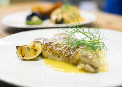 Bingelela Fish of the Day